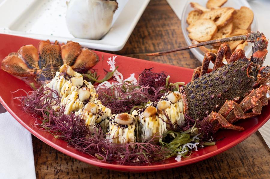 ashotur-gastronomiacastellon-1